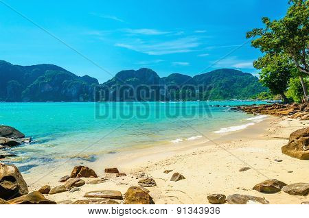 Fabulous beach with exotic plants and white sand