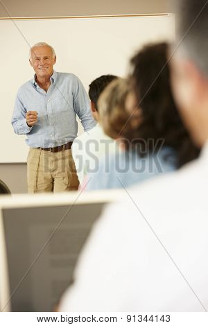 Teacher and mature students in class