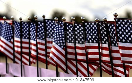 Row Of United States Flags