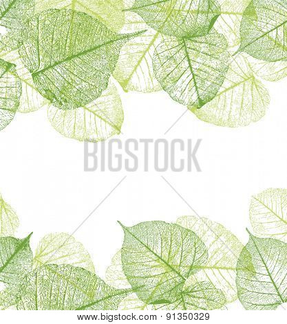 Fresh green leaves frame, vector illustration