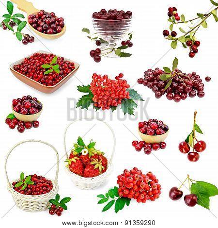 Berries red set