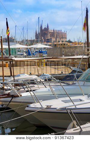 Palma de Mallorca port marina in Majorca with Cathedral church Balearic Islands