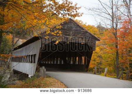 Covered Bridge And Foliage