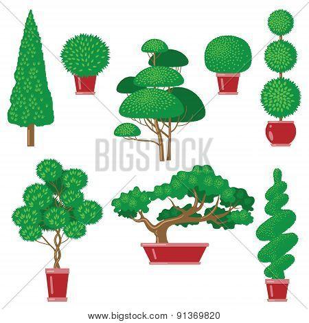 Trees Topiary Set