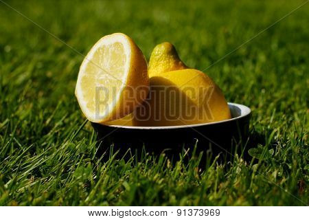 Refreshing Sliced Lemon Outdoors On Grass