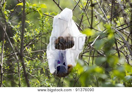 Plastic Trash Branches Tree