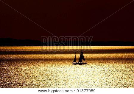 A lone white sail.