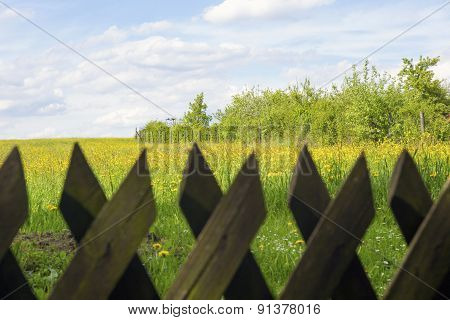 Field With Flowers Behind A Picket Fence