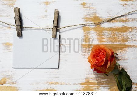 White Paper Hanging On A Clothesline With Orange Rose
