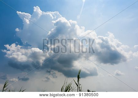 Sun Shine Above The White Clouds