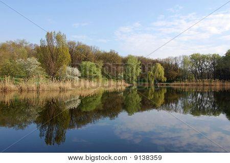 park lake in spring