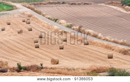 Countryside With Farmland And Golden Hay Bales