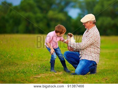 Grandpa Presenting Little Puppy To Grandson, Playing With Dog