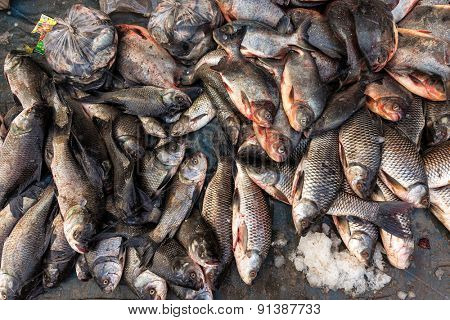 Fresh fishes on the ground of an Asian market in Mandalay, Myanmar
