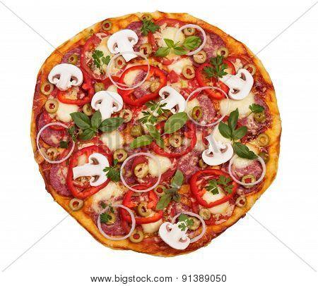 Big salami pizza