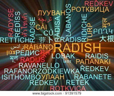 Background concept wordcloud multilanguage international many language illustration of radish glowing light