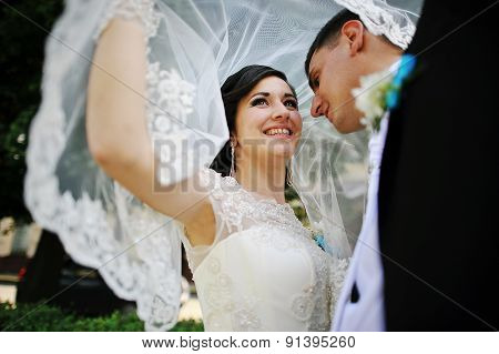 Wedding Couple Under The Veil