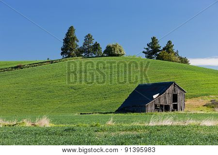 Old Barn By Hill.