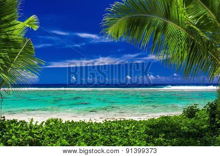 Pristine beach on tropical island during sunny day framed by palm trees