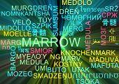 image of marrow  - Background concept wordcloud multilanguage international many language illustration of marrow glowing light - JPG