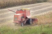 picture of combine  - Combine harvester working in soybean field in autumn