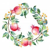 pic of pomegranate  - Vector round frame of watercolor pomegranate and berries - JPG