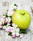 stock photo of apple blossom  - apple and apple tree blossoms on a old wooden table  - JPG