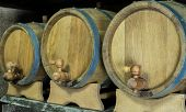 stock photo of tapping  - Three oak wooden barrels on racks with a taps - JPG