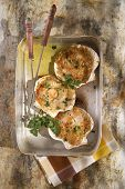 picture of scallops  - Presentation of scallops au gratin baked with parsley - JPG