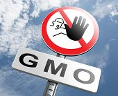 stock photo of genetic engineering  - no gmo stop genetic manipulated organisms or food engineering - JPG