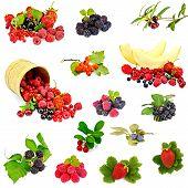 stock photo of blackberries  - Set photos of raspberries - JPG