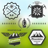 foto of edelweiss  - Mountain hiking outdoor symbol emblem label collection set - JPG