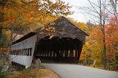 Covered Bridge And Foliage