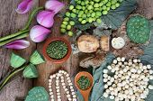 stock photo of seed  - Collection of lotus pink lotus flower green seed white lotus seed in fresh and dry herbal tea of this flora with amazing abstract concept in vibrant color this food make healthy good sleep - JPG