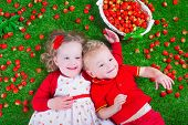 Постер, плакат: Children Eating Strawberry