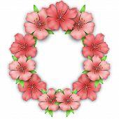 image of azalea  - Flower frame border - JPG