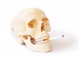 foto of smoke  - Smoking kills Stop smoking - JPG