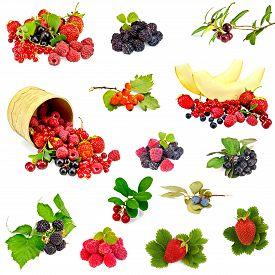 image of black-cherry  - Set photos of raspberries - JPG