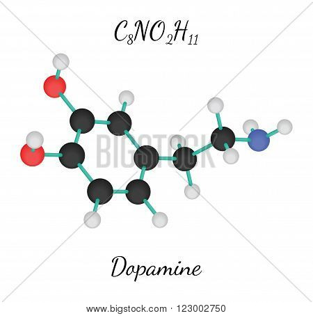 C8NO2H11 dopamine 3d molecule isolated on white