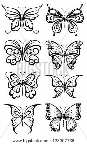 Set of butterflies silhouettes . Butterflies collection