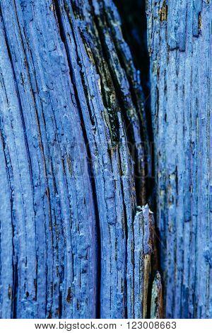 Old Blue Obsolete Vintage Wooden Board Background.