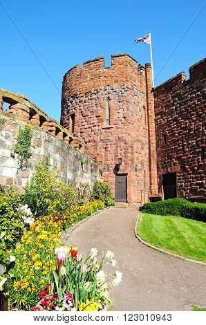 View of the sandstone castle tower with Spring flowers in the foreground Shrewsbury Shropshire England UK Western Europe.