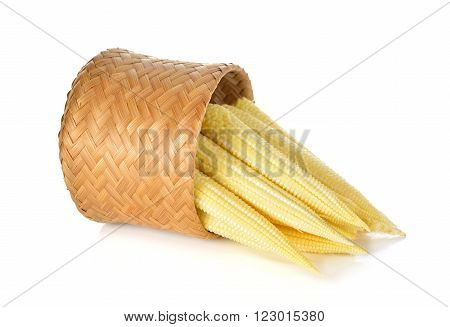 baby corn in bamboo basket on white background