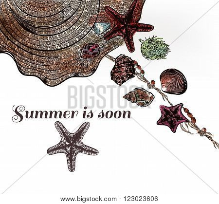 Illustration with hat and marine shells star fishes summer is soon vacation theme