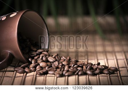 Coffee mug with beens on bamboo with Dracena background