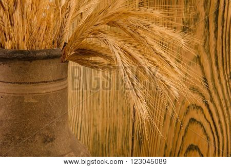 Old crock with a bunch of wheat ears (against the background of a wooden wall with focus on wheat ears) retro style