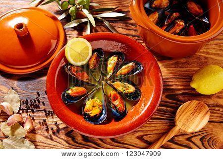 Tapas mejillones al vapor steamed mussels from Spain