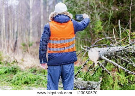 Forest inspector using tablet PC near tree in forest