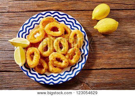 Tapas calamari romana squid rings seafood from Spain