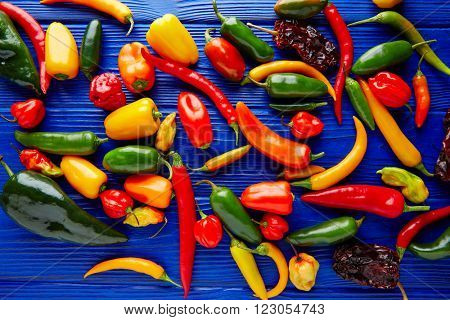 Mexican hot chili peppers colorful mix habanero poblano serrano jalapeno sweet
